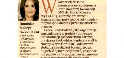 DKL-RZ-komentarz-poCOP19